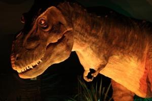 tiranossauro_rex
