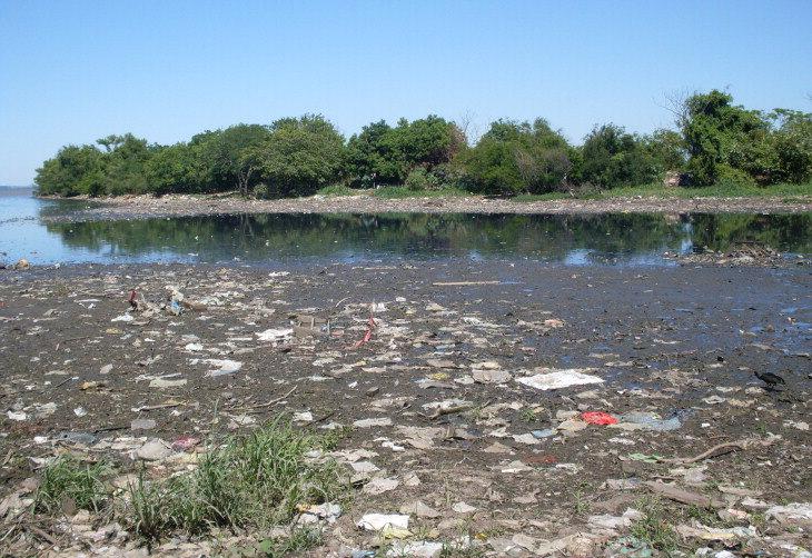 Ilha Das Flores Terá Mutirão Para Limpeza Hoje