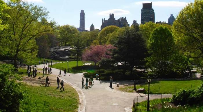 central-park--paths