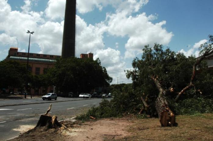 Fortunati diz que há pouco uso das árvores no entorno do Gasômetro   Crédito: Ricardo Giusti