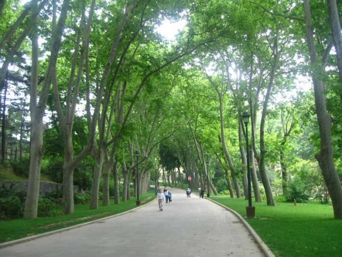 emirgan_park-istanbul_8.jpg