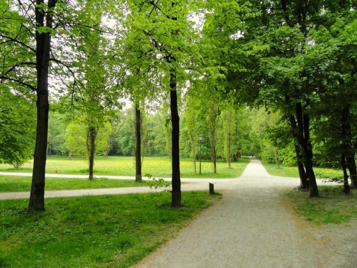 _Englischer_Garten,_Munich