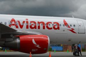 Companhia oferecerá voos diários a partir do dia 15 de novembro  Foto: Divulgação/PMPA
