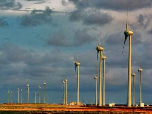 Energia eólica: preço inicial do leilão será de R$ 117 por megawatt-hora