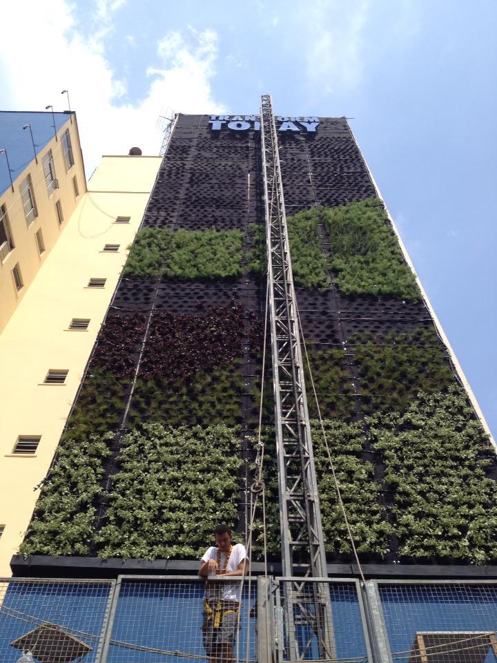 jardim vertical absolut:Está nascendo o primeiro jardim vertical em empena cega da America do