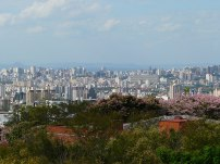 porto-alegre-vista-do-alto (120)