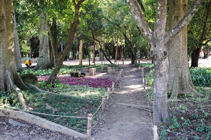 Objetivo é complementar a vegetação do parque com plantas ornamentais Foto: Sergio Louruz/Divulgação PMPA