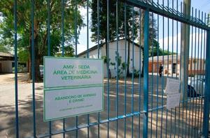 Hospital será erguido junto a uma unidade da Seda na Lomba do Pinheiro. (Foto: João Mattos)