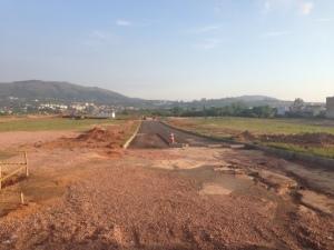 Empreendimento imobiliário do bairro Vila Nova, segundo TCE, deixou de replantar 2.364 mudas Foto: Matheus Schuch  / Rádio Gaúcha
