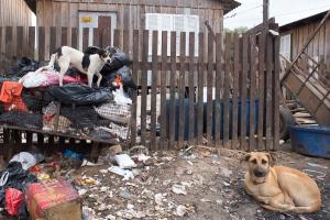 Moradores vivem em condições precárias atualmente   Foto: Bernardo Jardim Ribeiro/Sul21