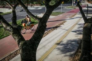 A ciclovia da Avenida Ipiranga éelogiada por ciclistas, porém alertam que a tinta vermelha deixa a pista escorregadia em dias de chuva |Foto: Guilherme Santos/Sul21