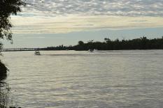 ilha-da-pintada (22)
