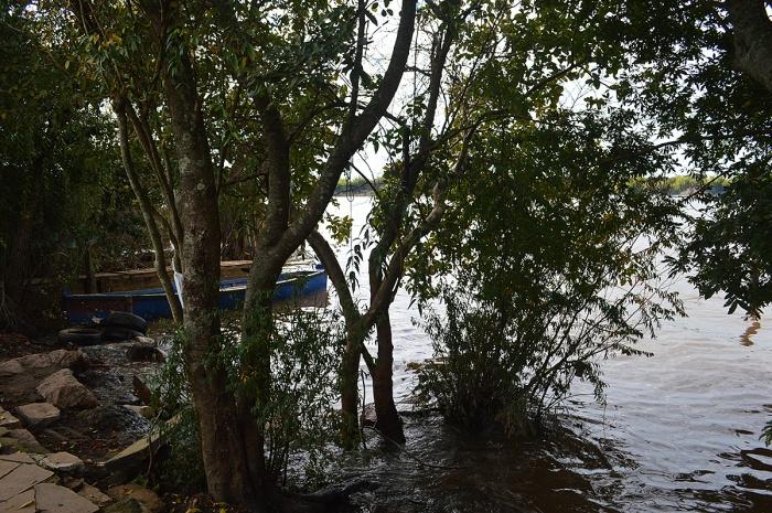 ilha-da-pintada (28)