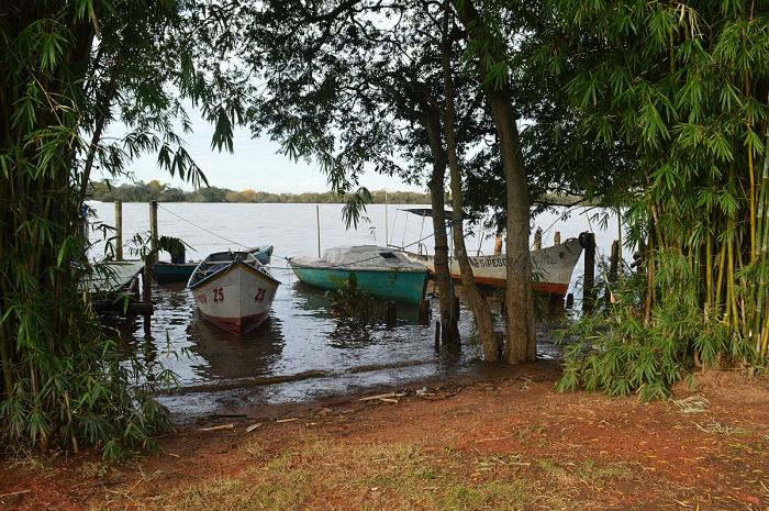 ilha-da-pintada (60)