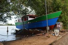 ilha-da-pintada (61)