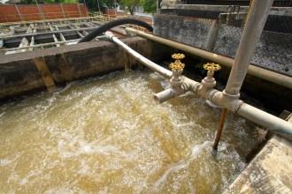 DMAE-agua-1