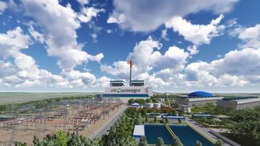 Carvão-Edição-Especial-chineses-planta (1)